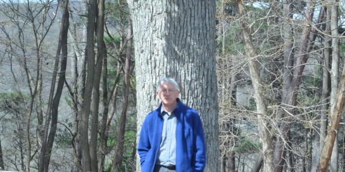 Trees the central focus of photo professor's passion project