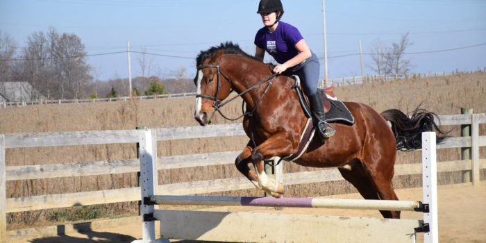 Equestrian team sees cut in funding